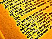 Dictionary Adversity