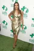 Rosario Dawson  at Global Green USA's 13th Annual Millennium Awards. Fairmont Miramar Hotel, Santa Monica, CA. 05-30-09