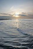 Sea Decline 1