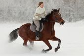 Horse Riding In Winter