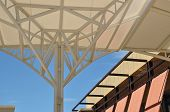 Canopy Structure and Blue sky