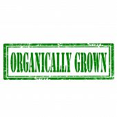 Organically Grown-stamp