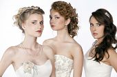 Beautiful three girls in the image of the bride