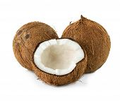 stock photo of hairy  - Coconuts - JPG