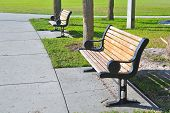 Pair of metal and wooden benches at a beach park