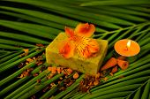Orange candle and orange orchid with soap on green palm
