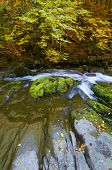 Silky stream in a forest in autumn, Ordesa National Park, Pyrenees, Huesca, Aragon, Spain.