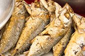 Fried Mackerel Fish