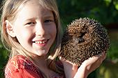 Little Girl With Cute Hedgehog