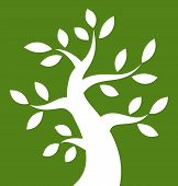 White Bold Tree icon on green background