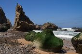 Sea Moss Rocks At Beach. Cabo Da Roca.