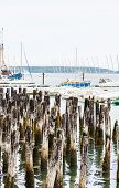 Sailboats Beyond Old Wood Pilings