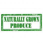 Naturally Grown Produce-stamp