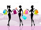 Shopper Women Shows Commercial Activity And Adults