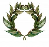 Watercolor laurel wreath
