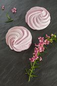 Two Pink Zephyr Or Marshmallow On Gray Background