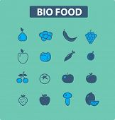 bio food, vegetables, fruits icons set, vector