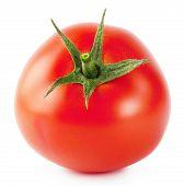 Bright Ripe Tomato