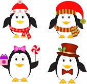 Isolated Penguins Vectors, Winter Vectors, Bird Vectors
