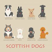 Set Of Scottish Dogs