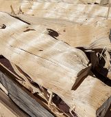 Dry birchen firewood.