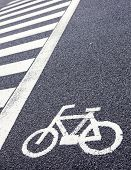Bicycle Lane Signage On The Street