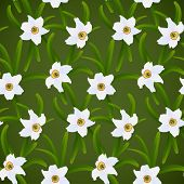 Spring flowers seamless pattern, white narcissuses and green grass