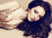 Beautiful Girl With Dark Hair In Luxurious Sequin Dress