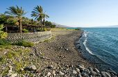 Beach Of Sea Of Galilee