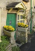 foto of yellow castle  - Green Cotswold Cottage Door with Yellow Flowers - JPG