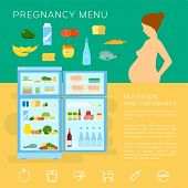 Pregnancy Menu Food Flat Style Vector Infographic Elements or Icons