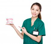 picture of dentures  - Female Dentist with denture - JPG