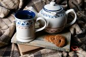 Cup of tea with cookies on table close-up