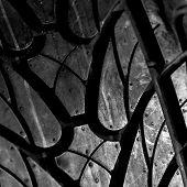 New car tire closeup photo
