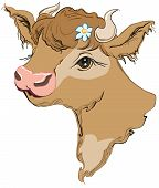 picture of cow head  - Brown cow head with a flower in her hair - JPG