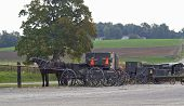 Amish Buggies & Wagons