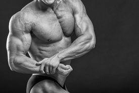 picture of bodybuilder  - Muscular man bodybuilder - JPG