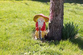 image of gnome  - Garden gnome in an autumn garden in the grass - JPG