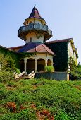 Sonoma Valley winery in California