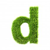 grass lower-case letter