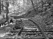 Tracks Into The Past