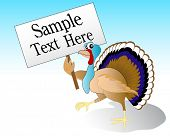vector illustration of a turkey holding a sign