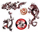 vector illustration of assorted dragon collection design