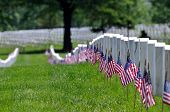 image of arlington cemetery  - Straight row of graves at the Arlington National Cemetery in Arlington - JPG