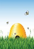 Vector illustration of honey bees around a hive in summer with copy space