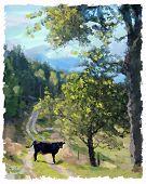 Pregnant_cow