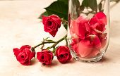 Rose Petals In A Glass