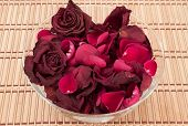 Dead Roses In A Bowl