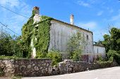 Large Abandoned Old Stone Family House Partially Overgrown On One Side With Crawler Plants Next To P poster