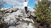Tourist Standing Alone By The Mountain Forest Landscape. Back View On Climbing A Rock And Looking To poster
